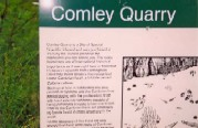 Comley Quarry Info Board